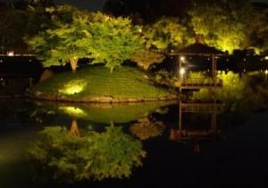 6.沢の池