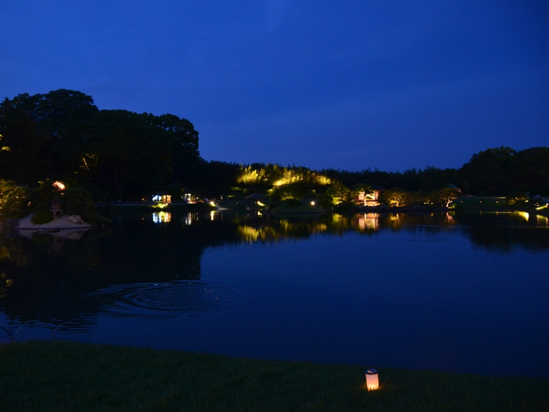 沢の池 | 岡山後楽園夜間特別開園「幻想庭園」