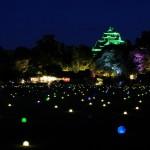 蛍の庭ライトアップ
