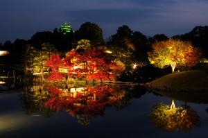 秋の幻想庭園-紅葉